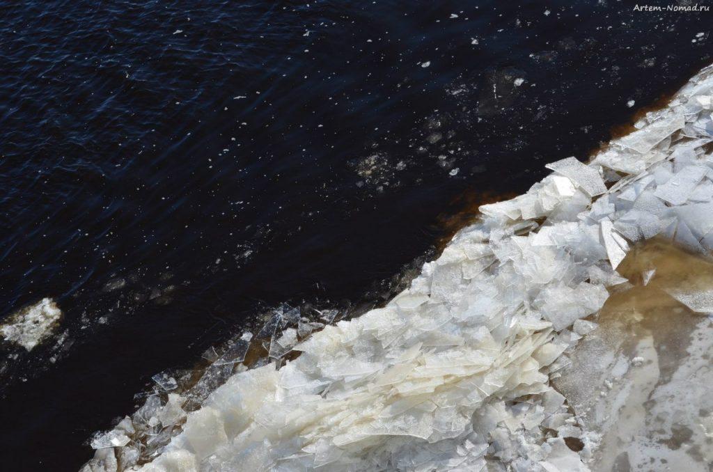 Лёдоход на Волхове. Торфяная вода.